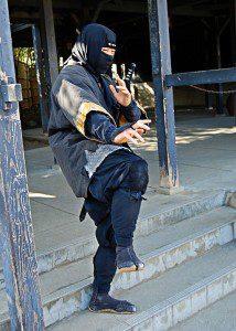 Ninja_in_Edo_Wonderland