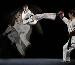550px-Steven_Ho_Martial_Arts_Kick