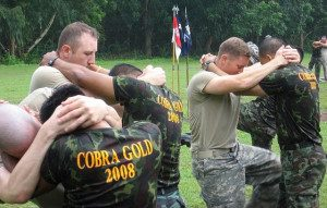 Cobra Gold 2008