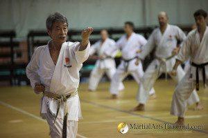 Shihan Fujikiyo Omura - 7Dan